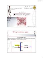 Cours sur l'Expression des gènes.pdf