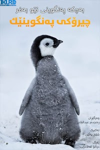 Snow Chick - A Penguin's Tale Poster
