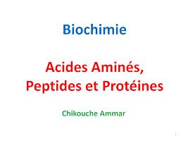 Acides, peptides et protéines (Diapo).pdf