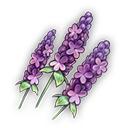 ピエーラの花(専用)