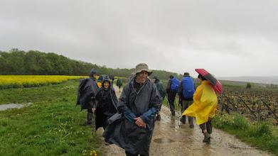 Photo: Il n'y a pas que Coubron Rando pour sortir par un temps pareil.....les gensdu RIF (Randonneurs Ile de France) eux assi ne craignent pas la pluie ni le vent!!!!