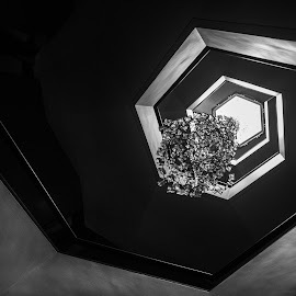 the chandelier  by Roland Bast - Black & White Abstract ( canada, stairwell, black and white, nac )