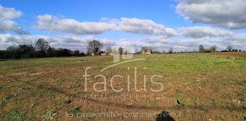terrain à Sainte-Blandine (79)