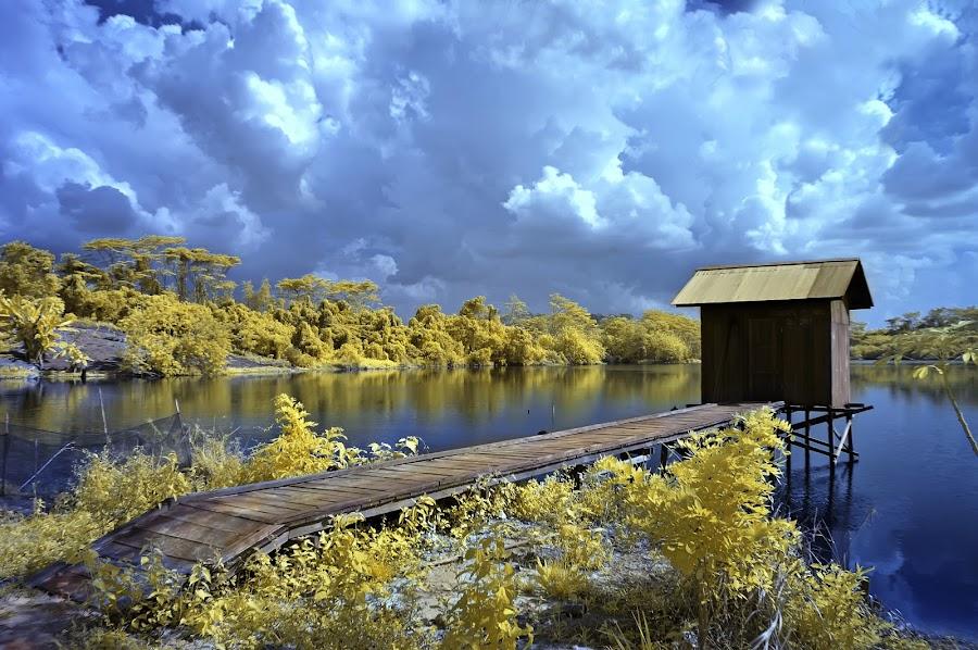 alone... by Henry Armijaya - Landscapes Waterscapes