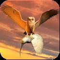 Clan of Owl icon