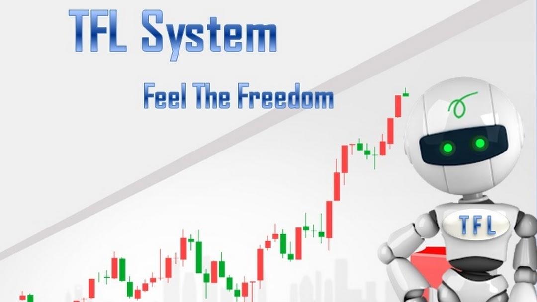 menjadi trader forex profesional
