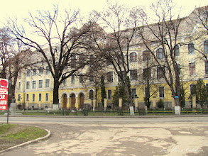 "Photo: Str. Dr. Ioan Ratiu, Nr.111 - Colegiul National ""Mihai Viteazul"" - Bustul lui Teodor Murasanu si  ""Stejarul Unirii"" - (2010.02.21)"