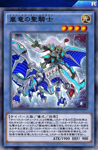 嵐竜の聖騎士