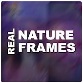 Real Parrot Nature Frames