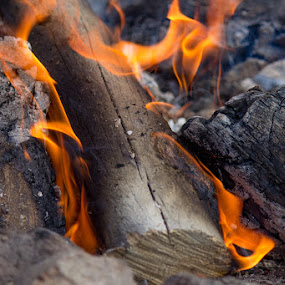 Camp Fire by Paul Cushing - Abstract Fire & Fireworks ( ashes, camp, flames, wood, log, fire )
