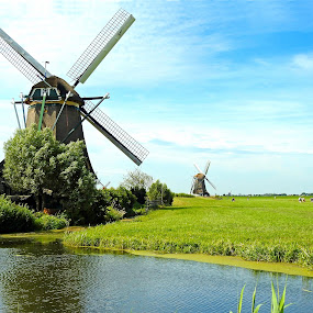 Dutch landscape by Bob Has - Landscapes Waterscapes ( water, mill, holland, dutch, windmill )