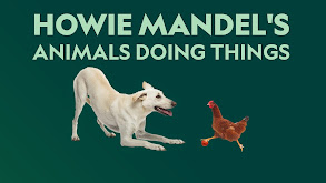 Howie Mandel's Animals Doing Things thumbnail