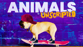 Animals Unscripted thumbnail