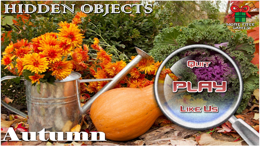 Hidden Objects Autumn