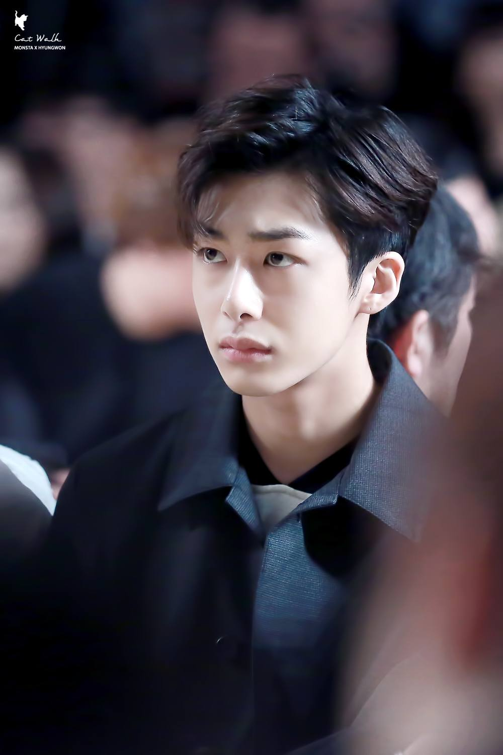 hyungwon visual
