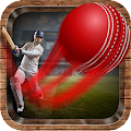 Onegame Cricket 2019