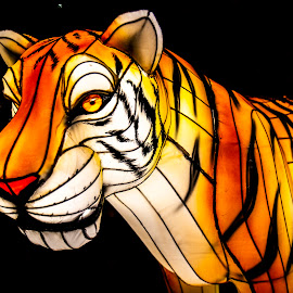 Glowing Tiger Image by Rich Gill by Rich Gill - Artistic Objects Other Objects ( pomona, california, rich amen gill, www.richamengill.com, glowing tiger, rich gill, images by rich amen gill )