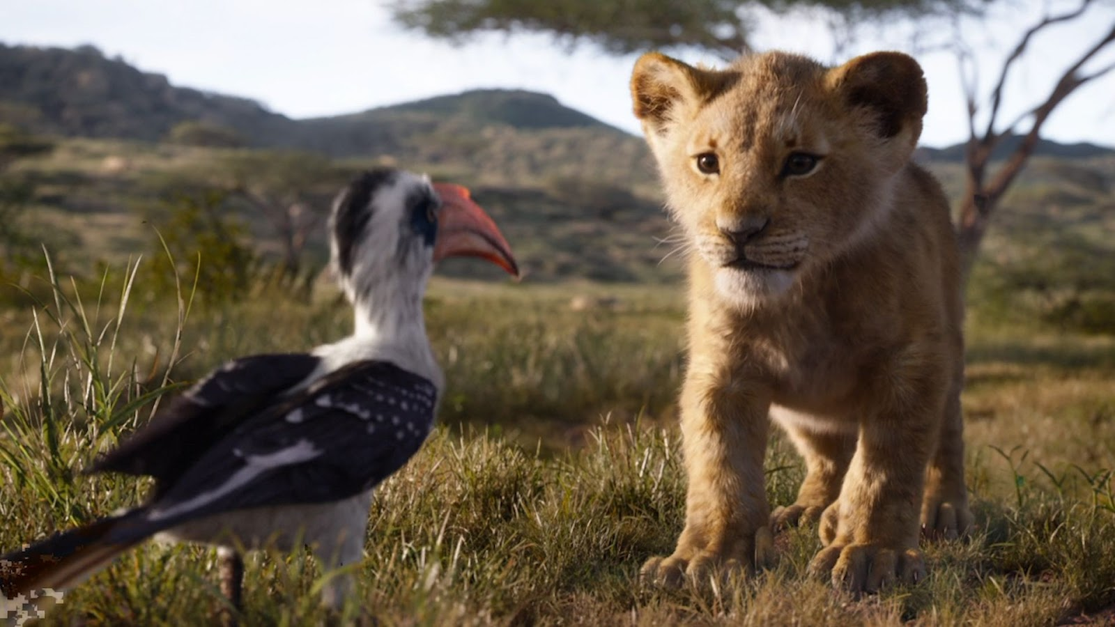 https://www.indiewire.com/wp-content/uploads/2019/04/63a33028-5f48-460e-9eed-007171960481-VPCTRAILER_THE_LION_KING_DESK_THUMB.jpg