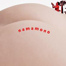 Photo: HIROYUKI「namamono」 CDジャケット試作03 2013.09