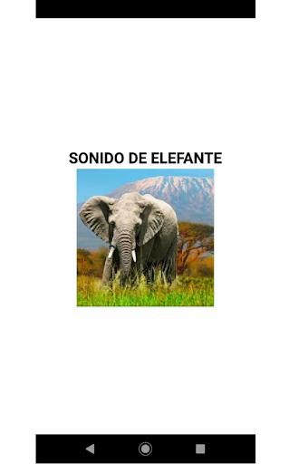Elefantesound  screenshots 1
