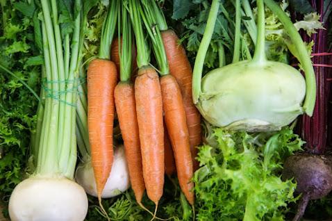 2.500… πελάτες είχαν οι λαχανόκηποι του ΑΠΘ