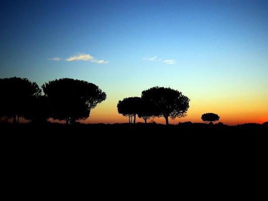 Le ombre sul tramonto di elisabetfly