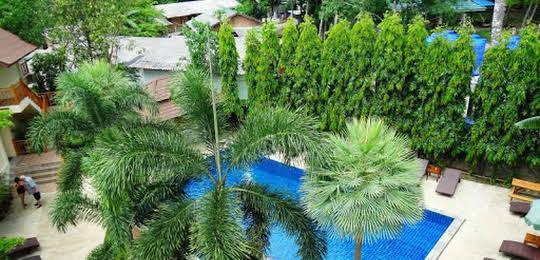 Paddy's Palms Resort
