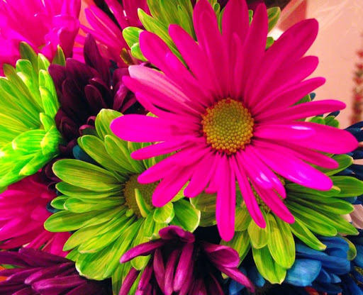 Neon Flowers Wallpapers Free