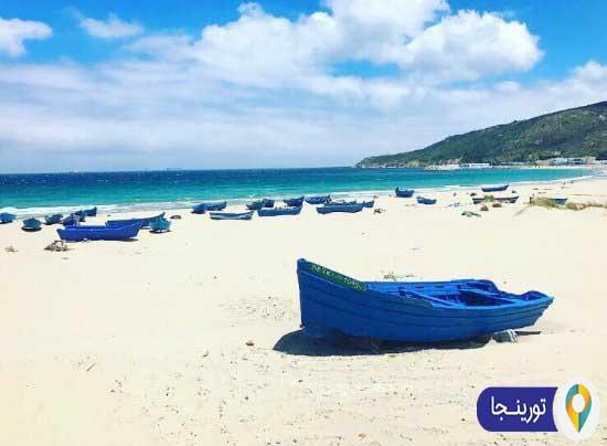 ساحل دالیا استانبول