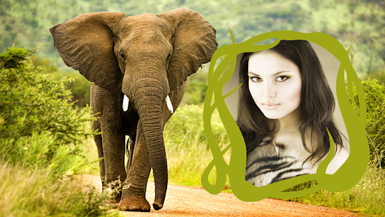Download Wild Animals Photo Frames For PC Windows and Mac apk screenshot 4