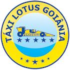 Taxi Lotus Goiânia icon