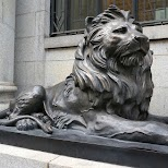 lion in Shanghai in Shanghai, Shanghai, China