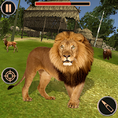 Hunting Jungle Wild Animals