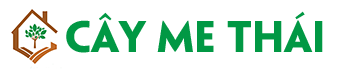 Cây Me Thái
