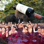 massive Japanese wine party in a Wine Spa at the Yunessun Water Park in Hakone, Japan in Hakone, Kanagawa, Japan