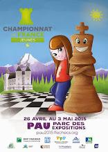 Photo: L'affiche officielle de Pau 2015