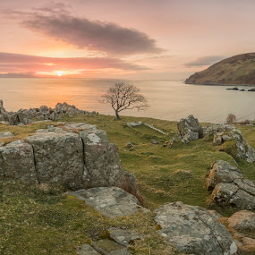 Murlough Bay by Wojciech  Golebiewski - Landscapes Sunsets & Sunrises ( clouds, colorful, colors, travel, coastline, landscape, panorama, nature, tree, fujifilm, nature photography, northern ireland, sunrise, natural, rocks, panoramic, golden hour )