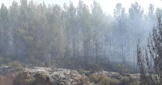 El Infoca lucha contra las llamas en un incendio forestal declarado en Alcolea