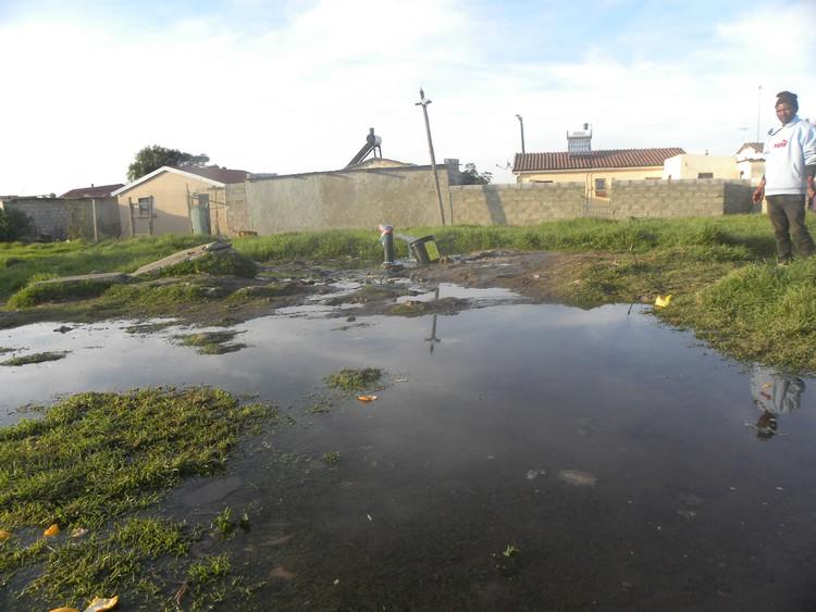 Waterkrisis kan lei tot 'werkbloedbad' in Nelson Mandelabaai - TimesLIVE