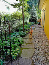 Photo: Mega-flag steps lead along the side of the garden into the back yard.