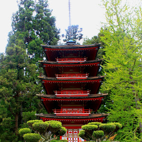 Japanese Temple by Amory Godwin Grijaldo - Buildings & Architecture Other Exteriors