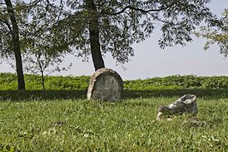 Photo: Izraelita temetők - Alsóregmec 3.