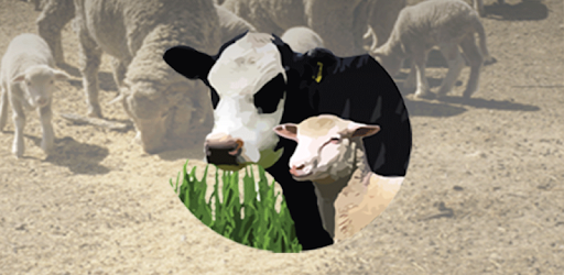 Drought Feed Calculator - Apps on Google Play