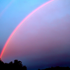 Double Rainbow by Denise Zimmerman - Landscapes Weather ( sky, colorful, rainbow )
