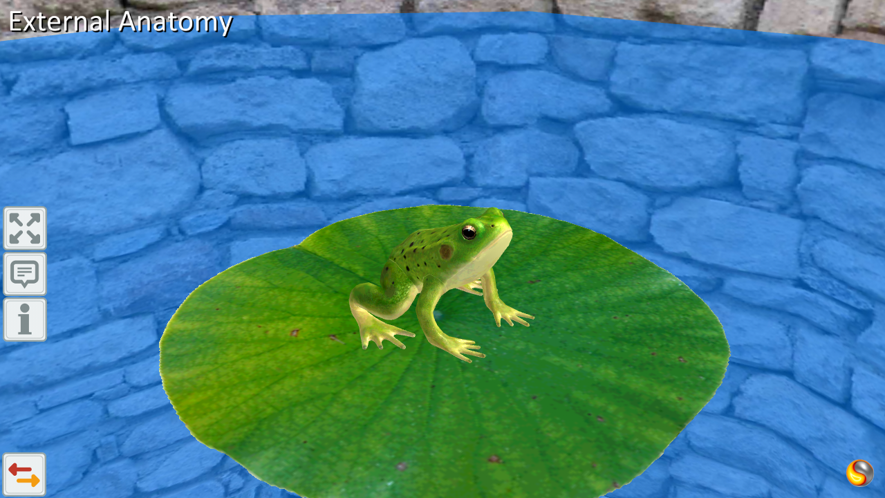 Frog Anatomy & Life Cycle APK 1.2 Download - Free Education APK Download