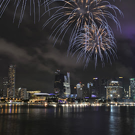 by Koh Chip Whye - Public Holidays New Year's Eve (  )