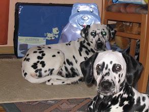 Photo: Dinah und ich 2005
