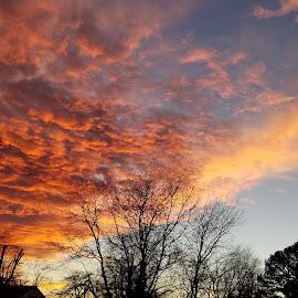 Sunset in the Ozarks by Paula Warren - Landscapes Sunsets & Sunrises ( red sky, sunset, ozarks )