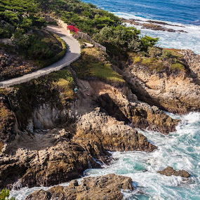 Pacific Coast Highway California by Kimberly Arend Porter - Landscapes Travel