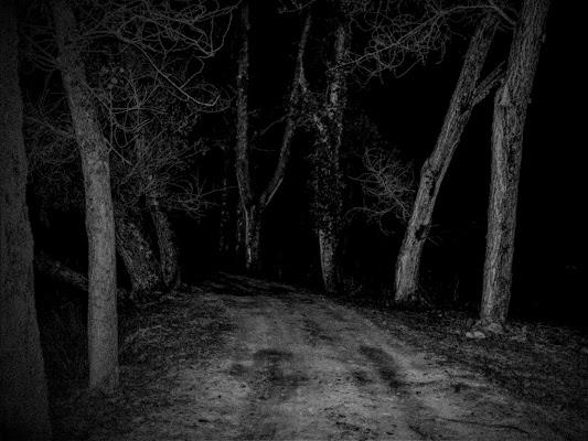 Passeggiata notturna di AngeloEsse